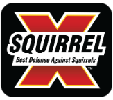 Squirrel-X
