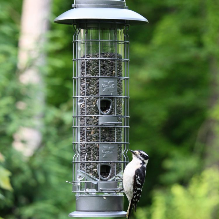 Squirrel-X4 SureFill No Spill Squirrel-Resistant Bird Feeder with woodpecker
