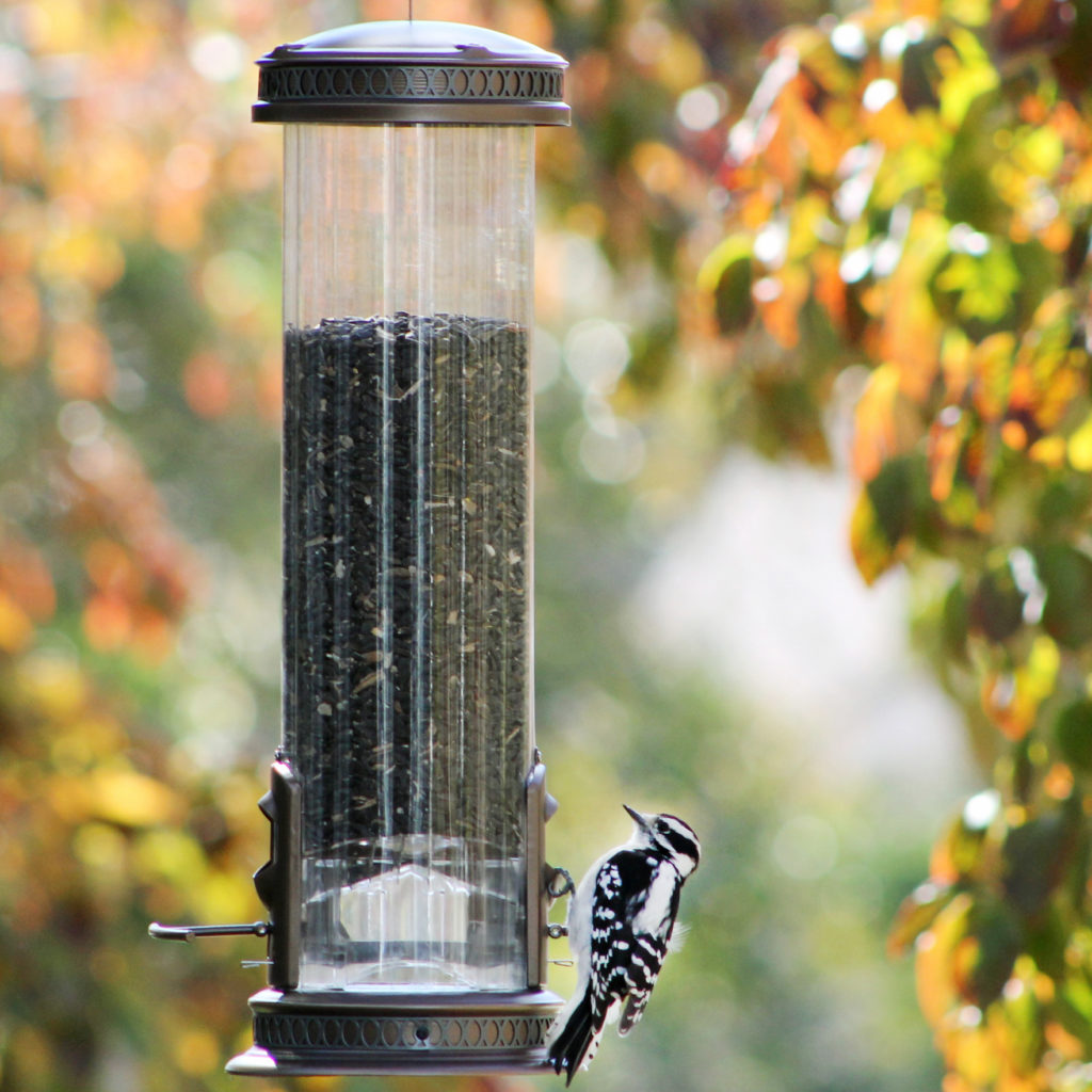 Squirrel-X3 squirrel resistant feeder