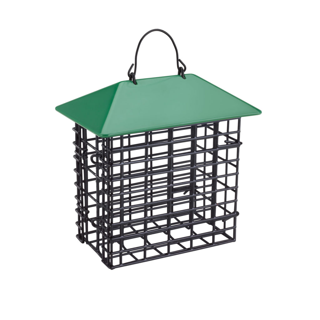Double Suet Feeder with Weather Guard in green