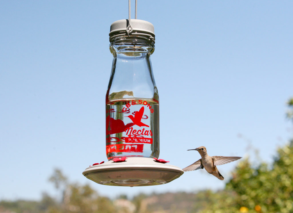 More Birds Jersey Hummingbird Feeder with hummingbird